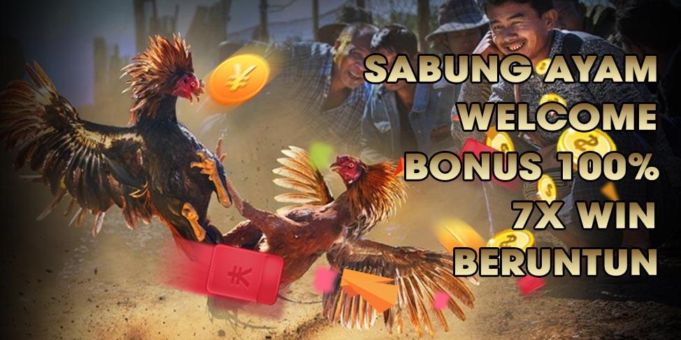 Situs Daftar Bandar Agen Judi Sabung Ayam Online S128 dan SV388 Terpercaya di Indonesia