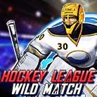 Hockey-League-Wild-Match