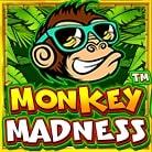 Monkey-Madness